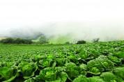 """파괴된 자연의 질서에서 가장 중요한 질서의 시작은 바로 """"LOF PREBIOTICS"""" (미생물 환경과 먹이)"""